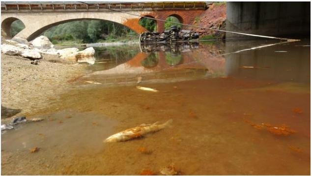 Kimyasal yüklü tanker çaya devrildi: Şoför hayatını kaybetti, balık ölümleri yaşandı