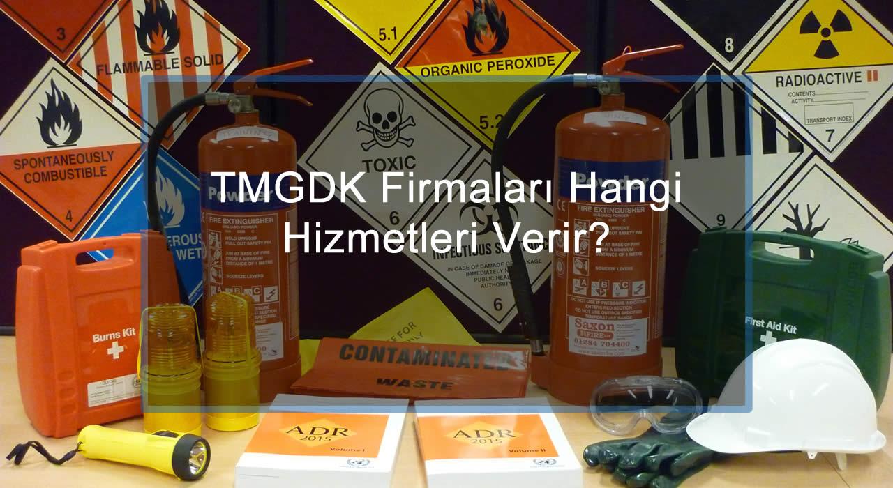 TMGDK Firmaları Hangi Hizmetleri Verir